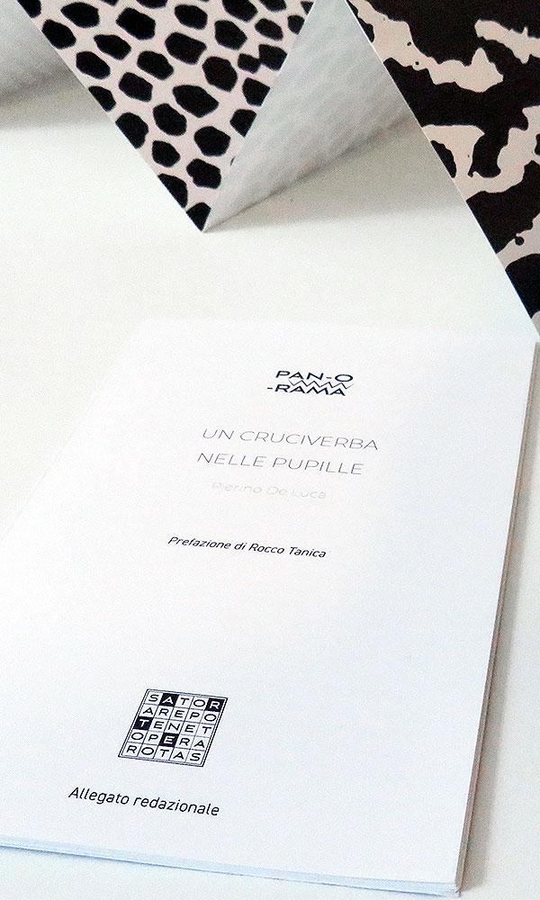 allegato prefazione di Rocco Tanica - Un cruciverba nelle pupille - Pierino De luca - PAN-O-RAMA